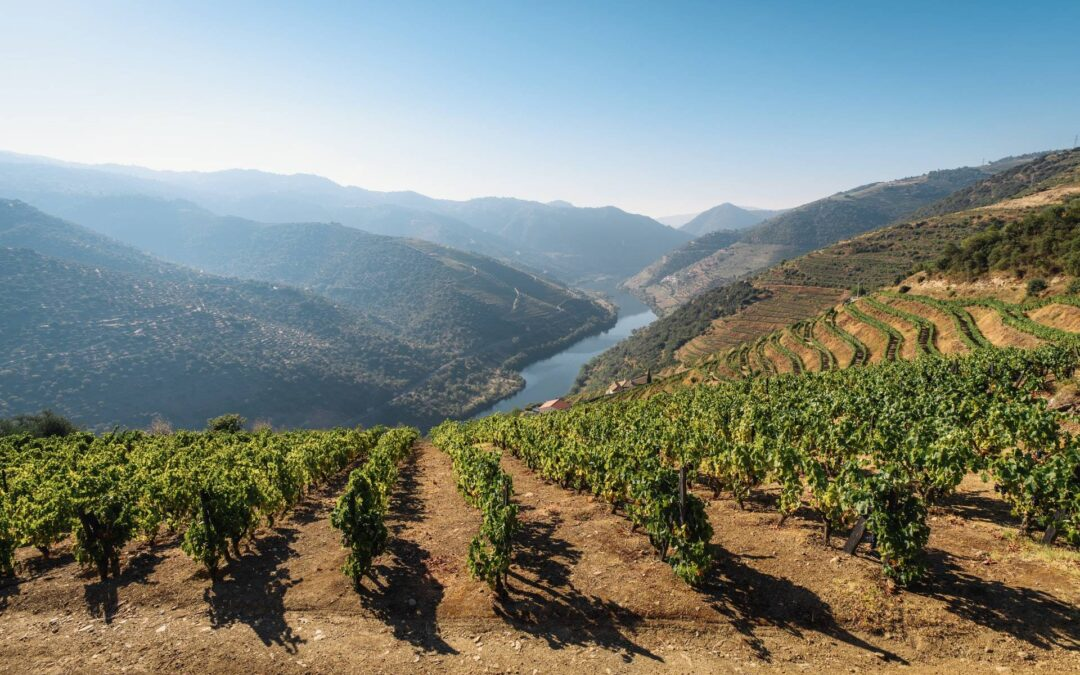 Visiting the Douro Wine Valley in Northern Portugal